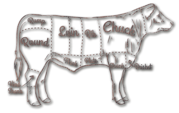 Cow - Giatras Meat Processing and Standardization